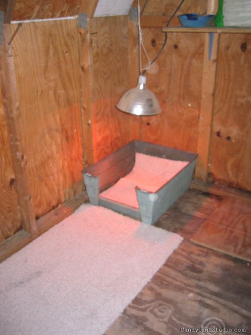 Heat Lamp Warming Lounge