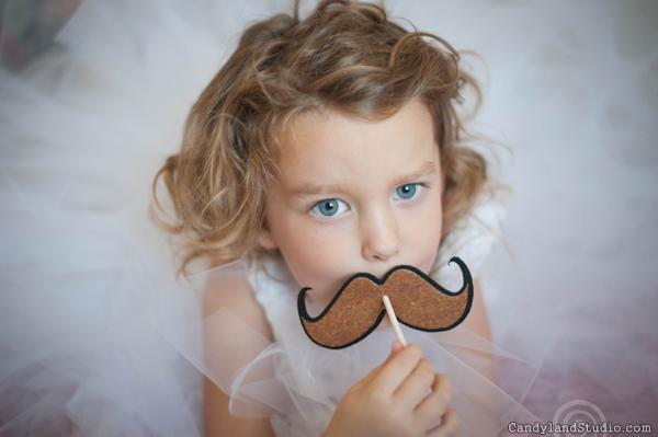 Felt Mustache Lollipop Cover
